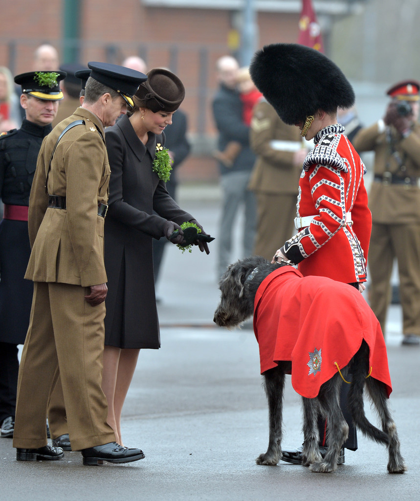 Kate+Middleton+Royal+Couple+Celebrates+St+K0DzuA6Pjyqx
