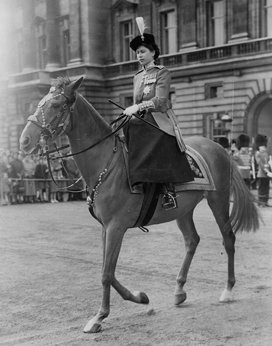 princess-elizabeth-horse-a