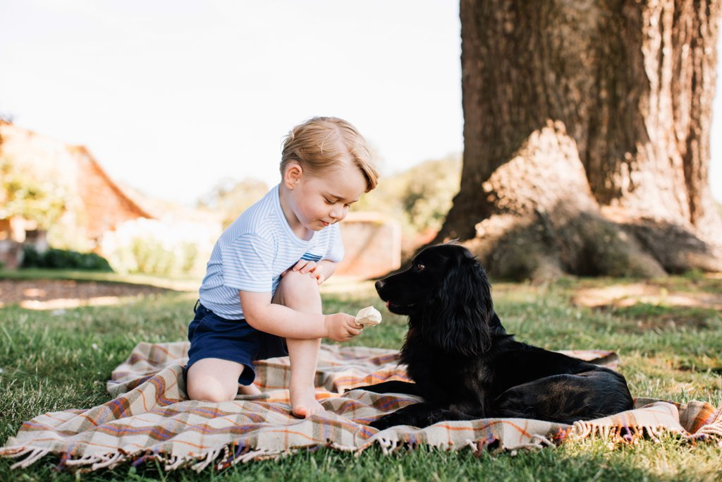 New-Photos-Prince-George-His-Third-Birthday