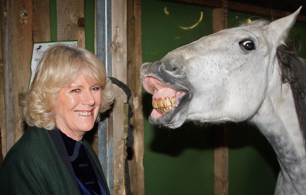 Camilla-visited-London-International-Horse-Show-December-2008