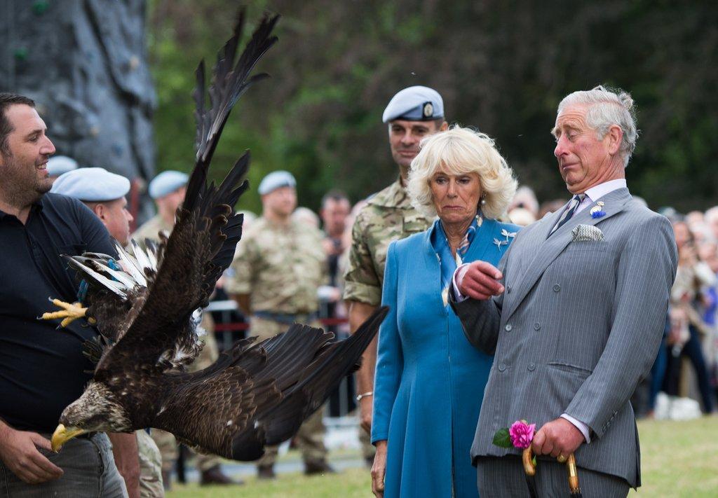 Charles-Camilla-got-up-close-personal-bald-eagle