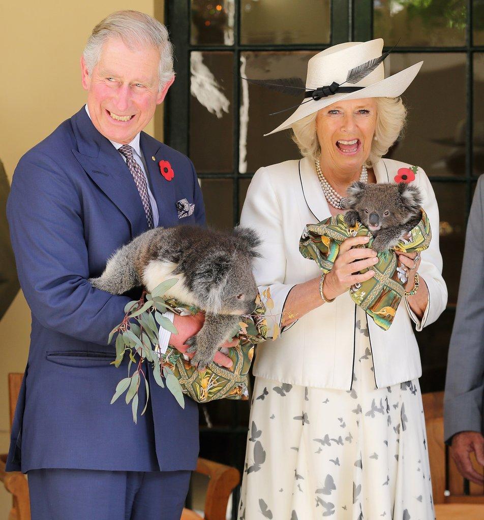 Charles-Camilla-posed-koalas-Adelaide-Australia