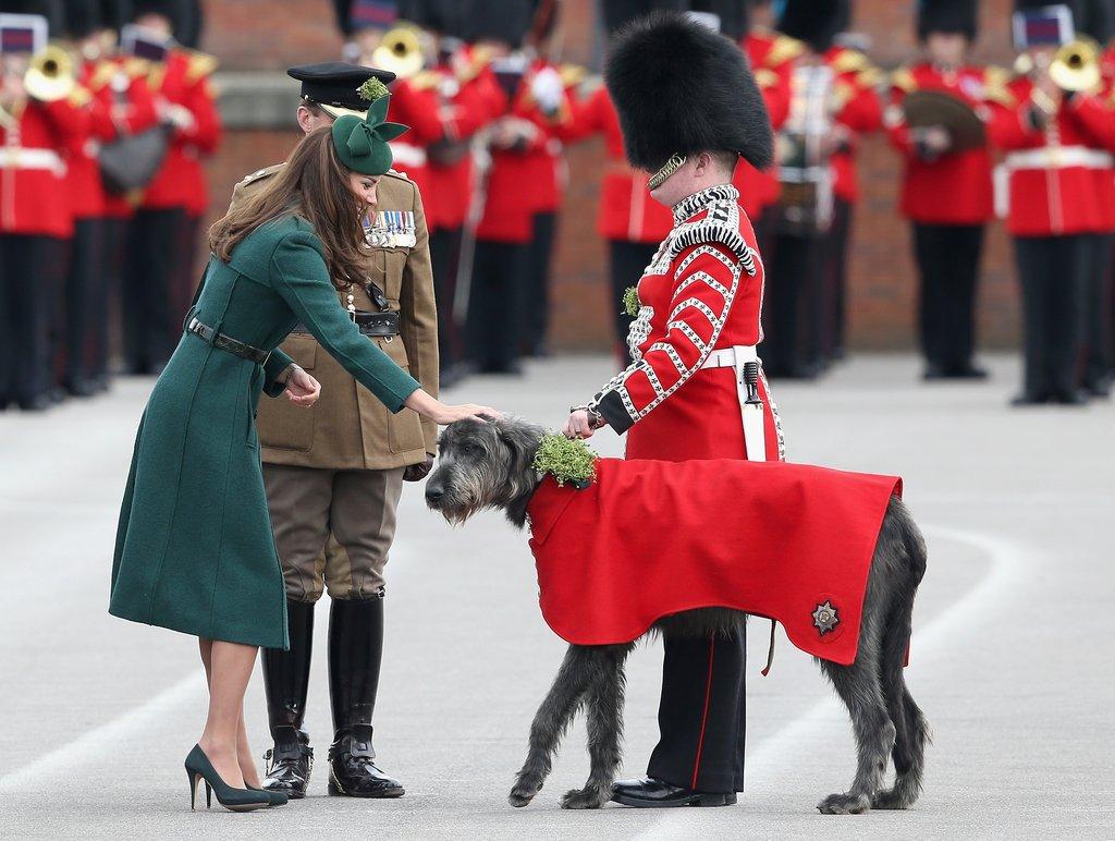Kate-awarded-shamrocks-Irish-Guard-Wolfhound-St