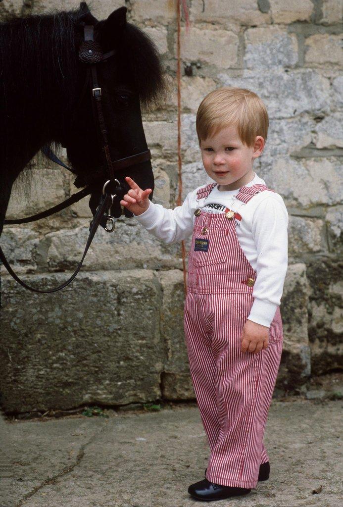 young-Prince-Harry-posed-his-pony-Smokey-1986