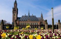 После тура по Канаде Кейт отправится в голландские города Гаагу и Роттердам