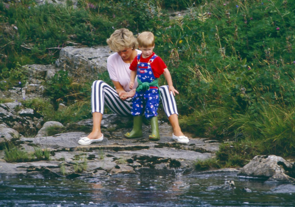 diana-playing-harry-1987
