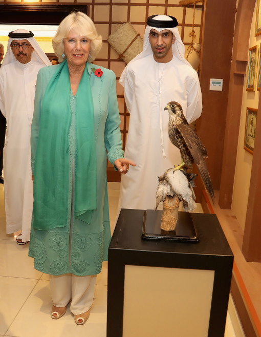 ABU DHABI, UNITED ARAB EMIRATES - NOVEMBER 07: Camilla, Duchess of Cornwall visits the Abu Dhabi Falcon Hospital on the second day of a Royal tour of the United Arab Emirates on November 7, 2016 in in Abu Dhabi, United Arab Emirates. Prince Charles, Prince of Wales and Camilla, Duchess of Cornwall are on a Royal tour of the Middle East starting with Oman, then the UAE and finally Bahrain. (Photo by Chris Jackson/Getty Images)