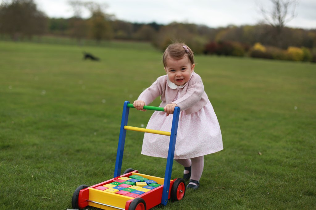 best-pictures-prince-george-princess-charlotte-20162