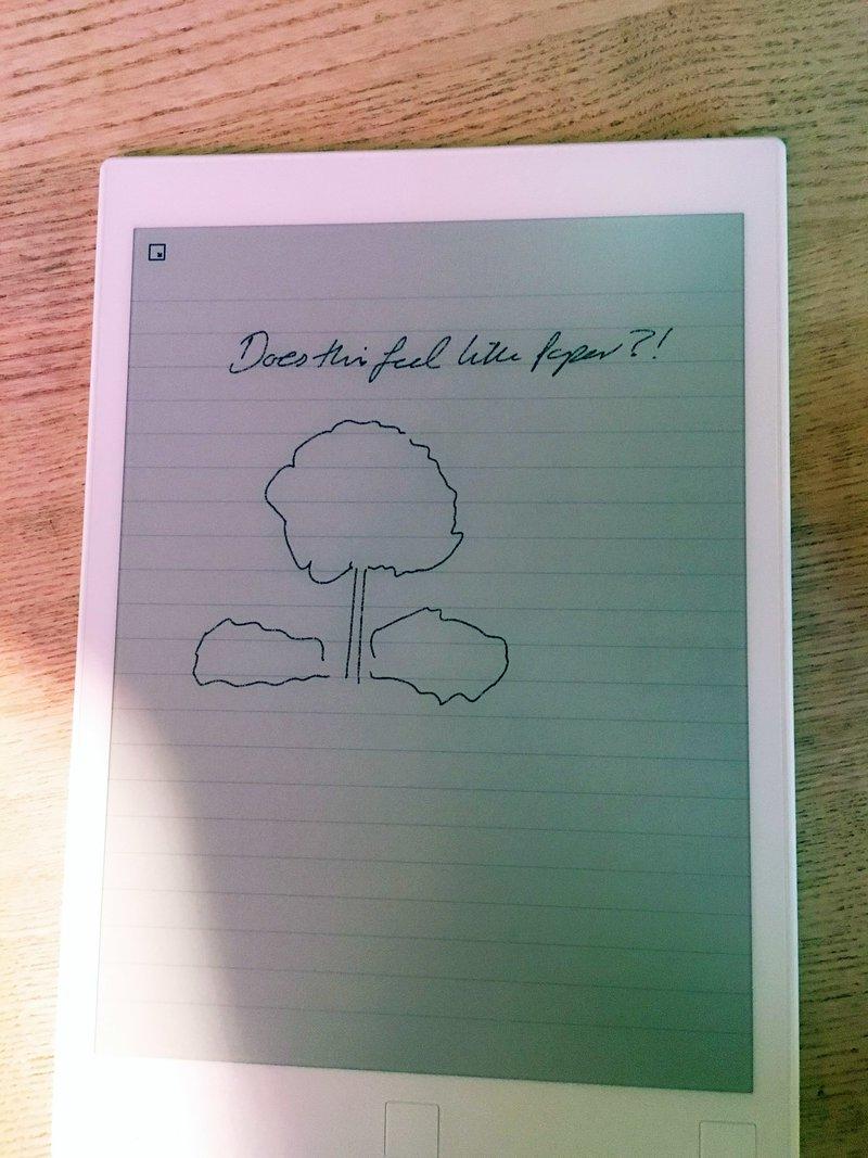 Кейт Миддлтон и Уильям в Норвегии продемонстрировали свой почерк