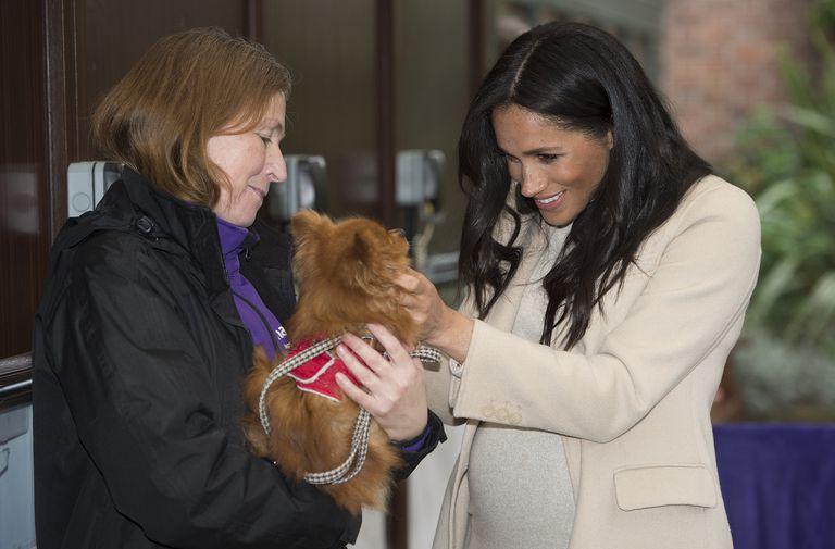 Нежный образ Меган Маркл во время визита в фонд защиты животных The Mayhew