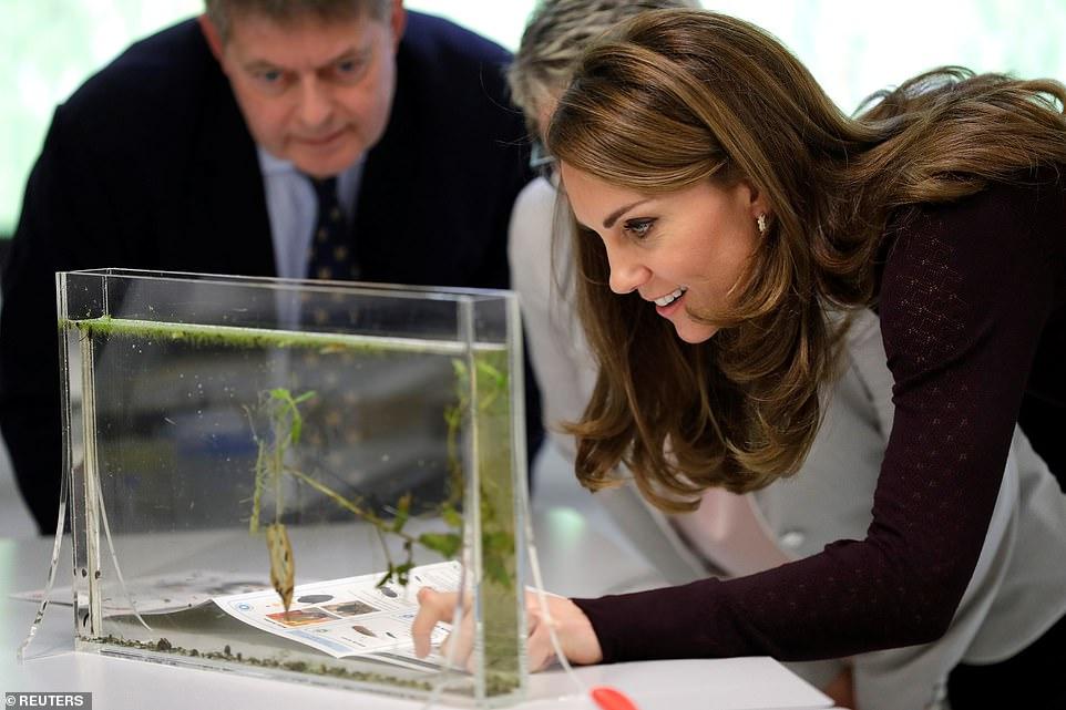 Стильный образ Кейт Миддлтон во время визита герцогини в Музей естествознания в Лондоне