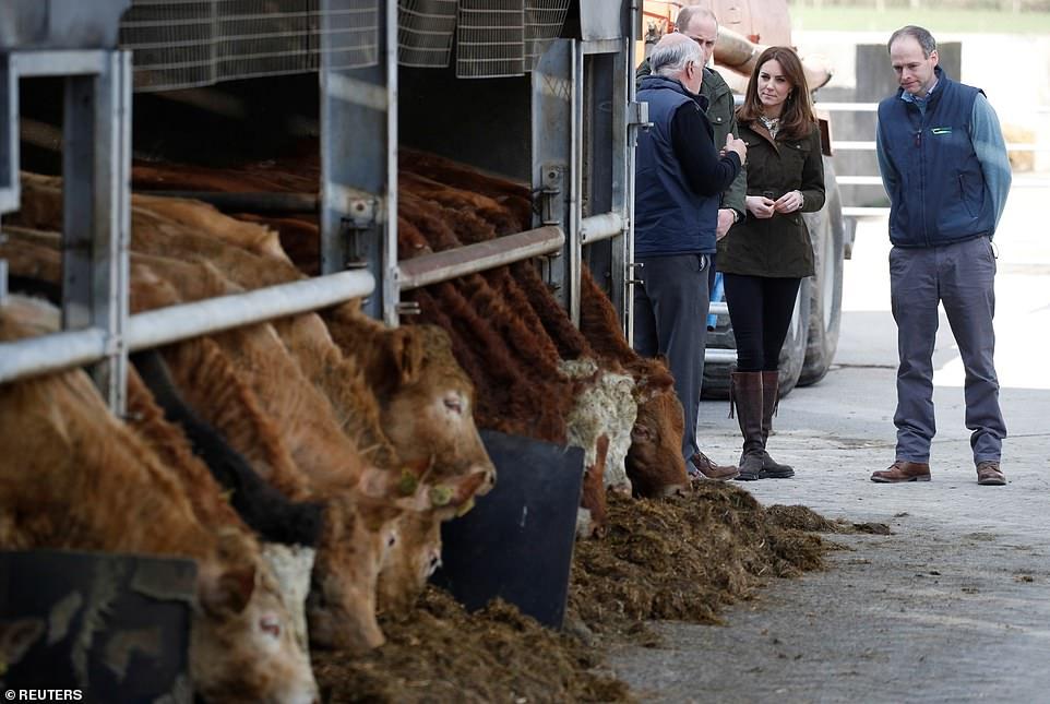 Кейт Миддлтон в кожаных сапогах на ферме Teagasc