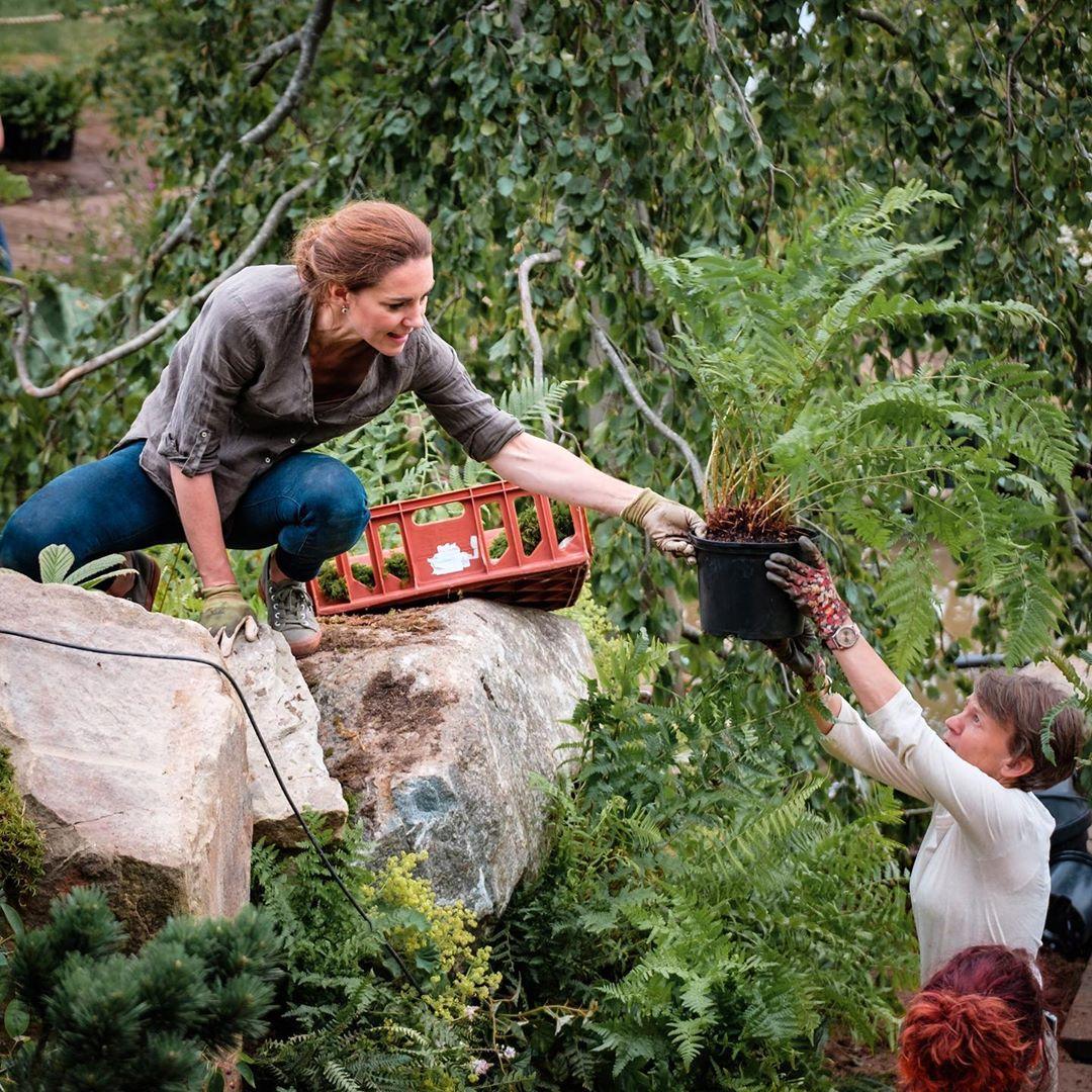 Кейт Миддлтон открыла цифровую выставку цветов в саду Челси