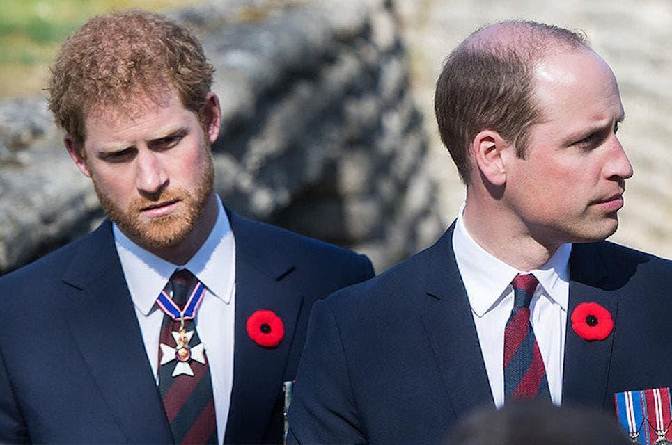 Принц Гарри и принц Уильям разделили денежные средства из фонда покойной принцессы Дианы поровну: подробности соглашения