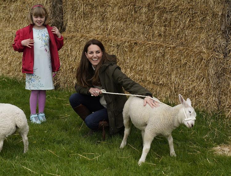 Принц Уильям и Кейт Миддлтон посетили ферму на севере Англии: герцогиня даже прокатилась на тракторе